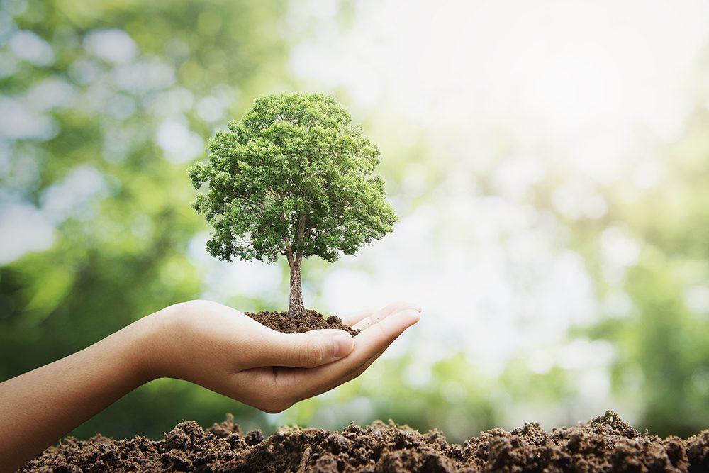 charte excellence écologie sur mesure menuiserie
